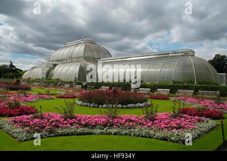 The Palm Glasshouse Kew Gardens West London England UK United Kingdom EU European Union Europe - Stock Photo