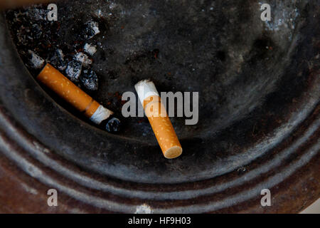 smoking cigarette damages your health and neighbor essay Smoking causes unattractive problems such as bad breath and stained teeth, and can also cause gum disease and damage your sense of taste the most serious damage smoking causes in your mouth and throat is an increased risk of cancer in your lips, tongue, throat, voice box and gullet (oesophagus.