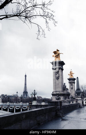 Alexander III bridge in Paris on a rainy winter day - Stock Photo