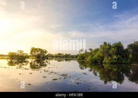 Kakadu, Yellow Water Billabong, Australia - Stock Photo