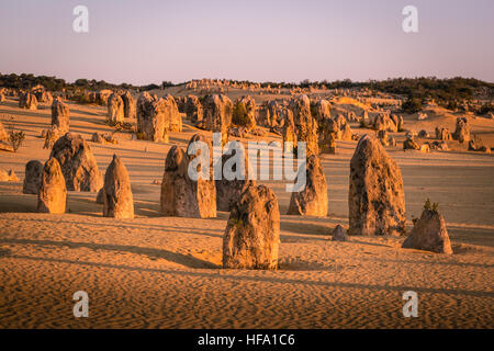 The Pinnacles Desert, Western Australia