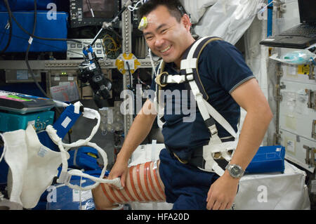 Astronaut Exercise on Station Astronaut Exercise on Station 25258427443 o - Stock Photo