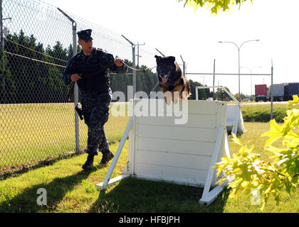120626-N-YC505-074  NORFOLK, Va. (June 26, 2012) Master-at-Arms 2nd Class Shane McClennen, a dog handler assigned - Stock Photo