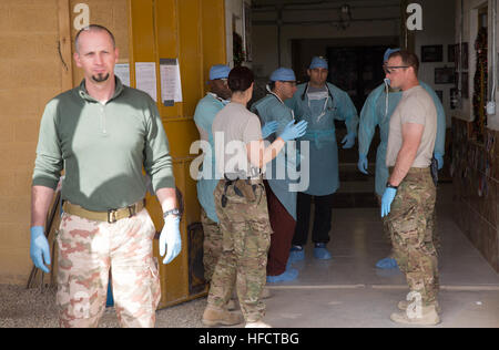 Medical personnel from Provincial Reconstruction Team (PRT) Farah, 541st Forward Surgical Team (Airborne) and coalition - Stock Photo