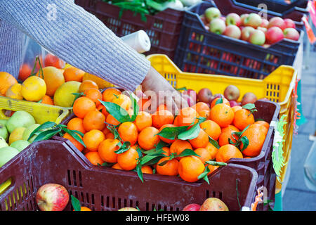 Fruit overflowing boxes on the counter of the local market, tangerines, oranges, apples. A hand grabs the mandarins - Stock Photo