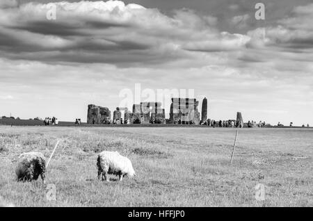 Sheep grazing as dark clouds hover over Stonehenge, Salisbury, England - Stock Photo