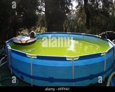 Stagnant above ground swimming pool - Stock Photo
