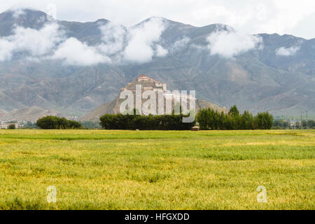 The view of the beautiful field with the Great Gyantse Castle in the distance. - Stock Photo