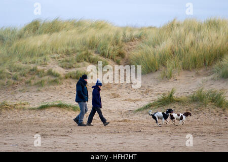 Dog plays on the beach, Ainsdale Beach, Merseyside, UK Weather. 1st January, 2017.  Dog walkers stretch their legs - Stock Photo