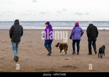 Ainsdale Beach, Merseyside, UK Weather. 1st January, 2017.  Dog walkers stretch their legs and exercise their animals - Stock Photo
