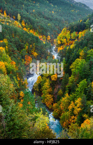 River and deciduous forest in autumn. - Stock Photo