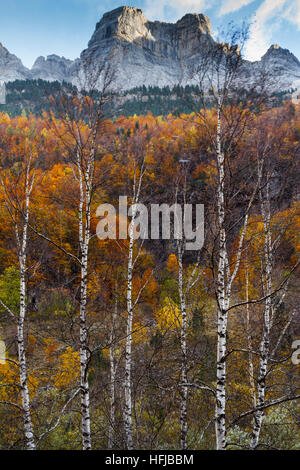 Mountains view and deciduous forest in autumn.  Ordesa National Park. Pyrenees mountain range. Huesca, Spain, Europe. - Stock Photo