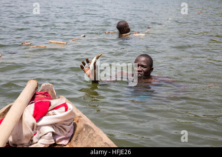 Baro village, Guinea, 1st May 2015: Fishermen catch fish in their net. This time is normally good for fishing because - Stock Photo