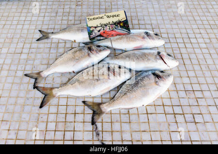 Sea bream for sale at the small waterfront fish market in Saintes-Maries-de-la-Mer, Bouches-du-Rhône, France - Stock Photo