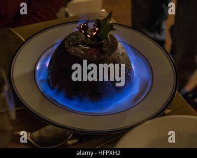 Flaming Christmas pudding with holly - Stock Photo