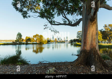 View across St James Mitchell Park and the Swan River to the city skyline at dawn, Perth, Western Australia, Australia - Stock Photo