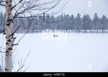 Steady snowfall overnight and -5 Centigrade temperatures contributed to a beautiful white Christmas, today 25th - Stock Photo