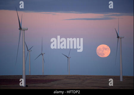 The November 2016 Supermoon rises behind a eastern Colorado windfarm near the town of Calhan. - Stock Photo