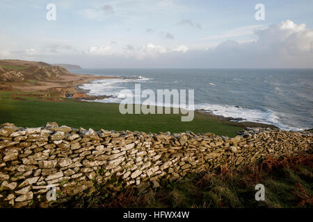 Dry stone wall between fields at Prawle Point, South Devon - Stock Photo