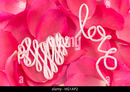 Word love made out of thread on red rose petals - Stock Photo