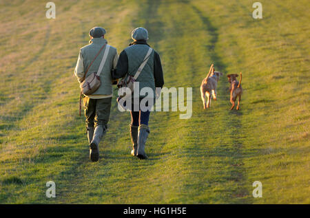 Country couple walking dogs on the South Downs Way - Stock Photo