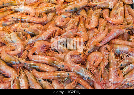 Fresh prawns for sale a market in Palermo, Sicily - Stock Photo