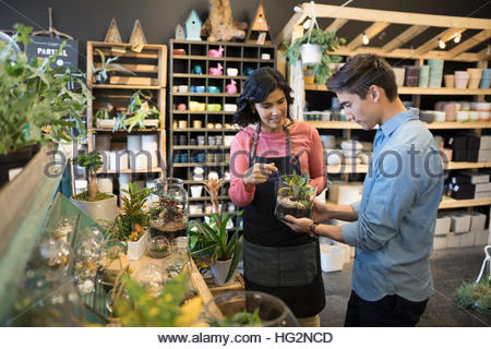 Female shop owner helping male customer shopping for terrarium in plant shop - Stock Photo