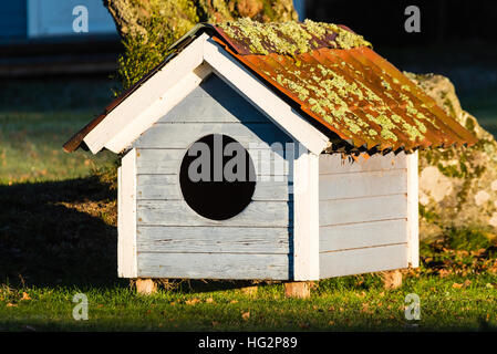 Exceptional Small Doghouse With Circular Hole And Lichen Growing On The Roof. It Looks  Old And