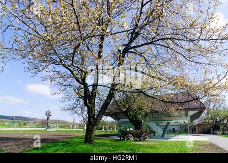 Winden am See: Wander Bertoni open air museum, , Burgenland, Austria - Stock Photo