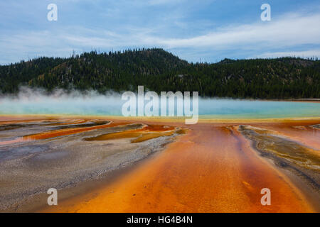 Famous trail of Grand Prismatic Springs in Yellowstone National Park. Beautiful  hot springs with vivid color in - Stock Photo