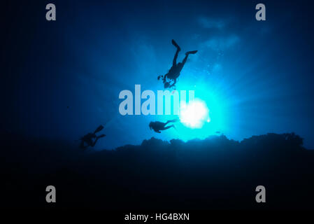 scuba divers swimming in sunshine along coral reef wall, looks like a flying. at Yap island Micronesia. - Stock Photo