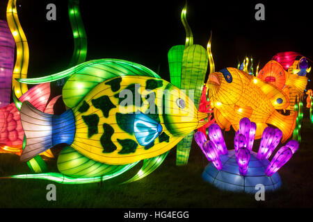 Longleat Festival of Light The Oceans of the World at Longleat Festival of Light, Longleat Estate, Wiltshire, England. - Stock Photo