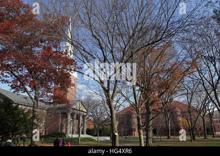 Harvard University campus on an autumn morning. The Memorial Church spire appears on the left and Sever Hall in - Stock Photo