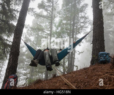 Mature couple hiking, relaxing in hammock in misty pine forest. - Stock Photo