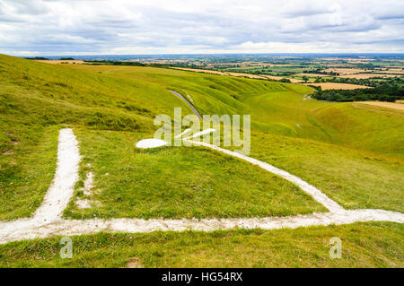 Head of the Uffington White Horse on White Horse Hill Oxfordshire - Stock Photo
