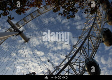 London Eye looking up through trees on the South Bank by the River Thames London - Stock Photo