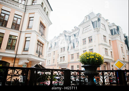 Flowerpot with yellow flowers on balcony background buildings. - Stock Photo