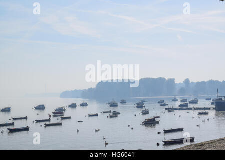 Anchored boats and swans on the river on the foggy sunny morning - Stock Photo
