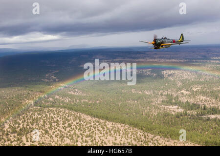 A Japanese A6M Zero and a Ki-43 Oscar fly in formation above a rainbow. - Stock Photo