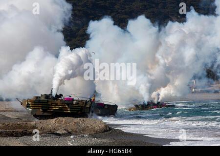 Korean amphibious assault vehicles land on Dogu Beach, South Korea. - Stock Photo