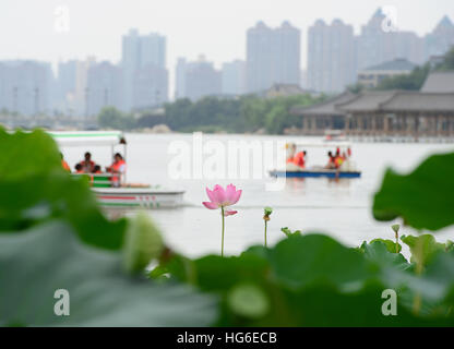 Beijing, China. 22nd July, 2016. Photo taken on July 22, 2016 shows a view of the Qujiangchi Park in Xi'an, capital - Stock Photo
