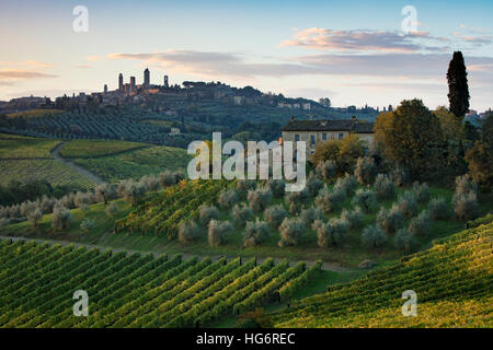 Vineyards, olive groves and Tuscan countryside below medieval town of San Gimignano, Tuscany, Italy - Stock Photo