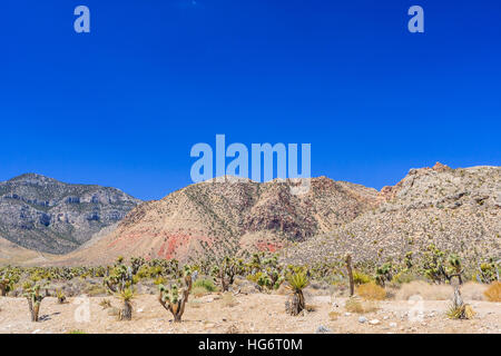 Majestic sandstone escarpment dominates the Red Rock Canyon National Conservation Area. Narrow canyons along the - Stock Photo