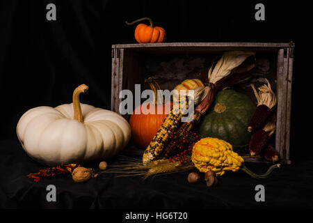 Fall still life with pumpkins, gourds, squash in a wooden box with deep shadows. - Stock Photo