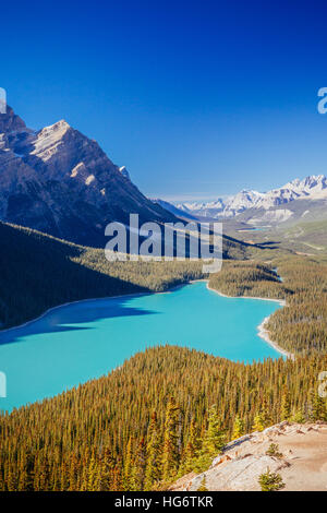 Peyto Lake is a glacier-fed lake located in Banff National Park in the Canadian Rockies. The lake itself is easily - Stock Photo