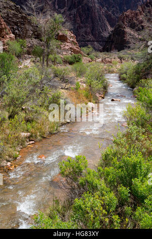 Bright Angel Creek flowing toward the Colorado River at the bottom of the Grand Canyon. Grand Canyon National Park, - Stock Photo