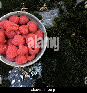 High angle view of raspberries in bowl on moss covered rock - Stock Photo