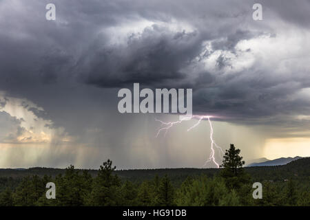 Strong thunderstorm with heavy rain and lightning near Pine, Arizona. Stock Photo