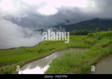 Yuanyang Hani Rice Terraces, Yunnan, China, summer - Stock Photo