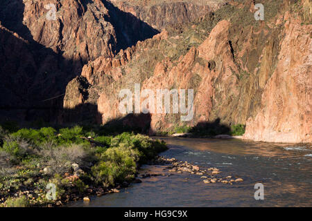 The Colorado River flowing past the Bright Angel Campground in the Grand Canyon. Grand Canyon National Park, Arizona - Stock Photo